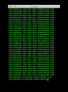 Screen Shot 2012-12-14 at 9.04.53 AM